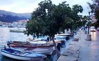 Small boats and fig tree in harbour Baska Krk Croatia